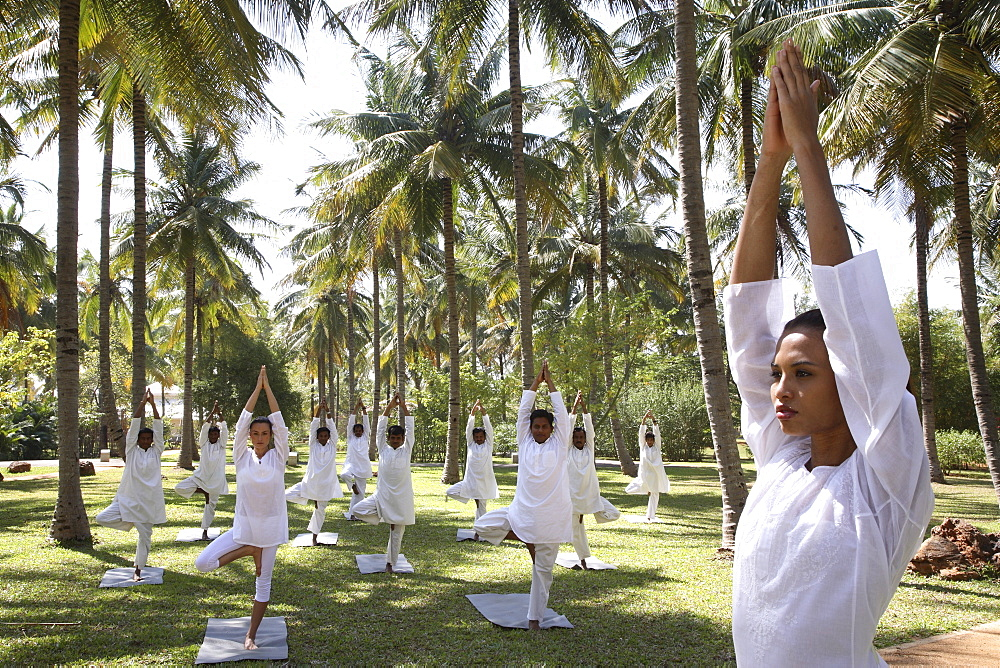 Group yoga session on the lawn at the Shreyas Retreat